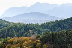 Autumn forest mountain landscape Stock Photography