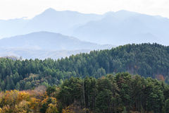 Autumn forest mountain landscape Royalty Free Stock Photography