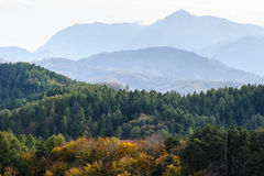 Autumn forest mountain landscape Stock Images