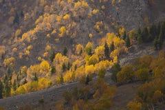 Autumn on mountains Stock Photo
