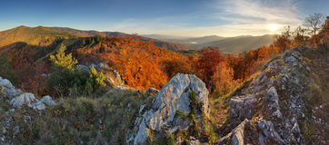 Autumn forest mountain panorama Royalty Free Stock Image