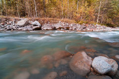 Autumn forest and mountain river Stock Photos