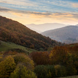 Autumn forest on a  mountain slope Stock Image