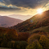 Autumn forest on a  mountain slope at sunset Royalty Free Stock Images