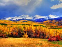Autumn forest and mountains. Scenic view of Autumnal forest with snow capped mountain range in background under cloudscape, Colorado, U.S.A Royalty Free Stock Photo