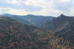 Autumn forest in the mountains Royalty Free Stock Photo