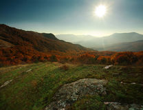 Autumn forest in the mountains under the blue sky Stock Images