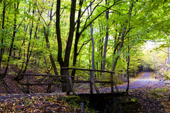 Autumn forest in the mountains, wooden bridge. Royalty Free Stock Image