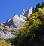 Autumn forest and mountainside Royalty Free Stock Images