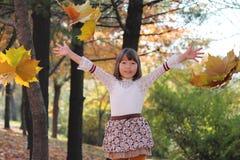 Autumn forest nature beautyl,eisure park. Autumn forest nature beauty kids babygirl,families stock image