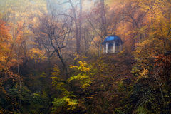 Autumn forest nice time for thought . Goryachiy klyuch Stock Image