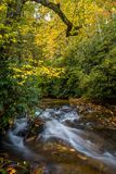Autumn in the forest in Oct. In Pisgah Forest, NC Stock Photos