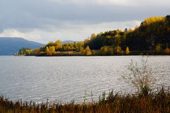 Autumn forest over fjord in Telemark, Norway Royalty Free Stock Images