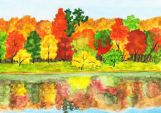 Autumn forest, painting. Hand painted picture, watercolours - autumn landscape, forest with reflection in water Stock Photography