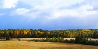 Autumn Forest Panorama Fotos de archivo