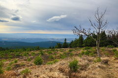 Autumn, Forest, Panorama, Orlické Mountains, Czech Republic Royalty Free Stock Photo