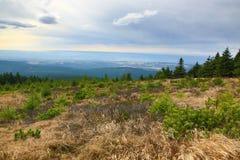 Autumn, Forest, Panorama, Orlické Mountains, Czech Republic Royalty Free Stock Photos