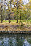 Autumn forest park. Russia Royalty Free Stock Photography