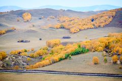 The autumn forest and path. Wulanbutong scenic area.The photo was taken in Wulanbutong scenic area Hexigten Banner Chifeng city Inner Mongolia Autonomous Region Royalty Free Stock Photo