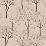 Autumn forest pattern. Plant and trees seamless background Stock Photos