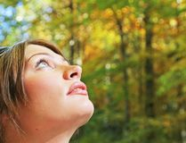 Autumn forest portrait Stock Photo