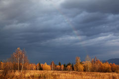 Autumn forest and a rainbow Royalty Free Stock Images