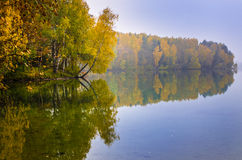 Autumn forest reflected on lake Royalty Free Stock Image