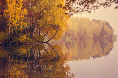 Autumn forest reflected on lake Royalty Free Stock Photo