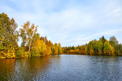 Autumn forest reflected in water Royalty Free Stock Photos