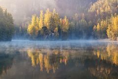 Autumn forest reflected in water. Colorful autumn morning in the mountains. stock images