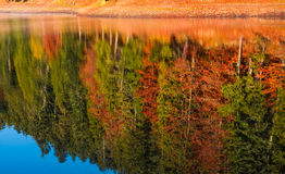 Autumn forest reflection in lake. Beautiful and vivid background with colorful foliage and abstract textures Stock Photography