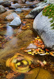 Autumn forest river. The autumn forest is colorful, everywhere is the beautiful scenery Stock Images