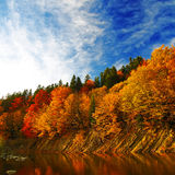 Autumn forest by the river Royalty Free Stock Images