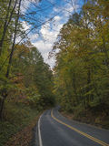 Autumn Forest Road Stock Photos