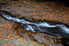 Autumn forest rocks creek Royalty Free Stock Images