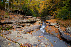 Autumn forest rocks creek in the woods. With yellow trees foliage royalty free stock images