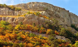 Autumn Forest on rocky Mountain hill colorful seasonal Landscape Stock Photo