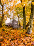Autumn forest and the ruins on the hill Stock Photos