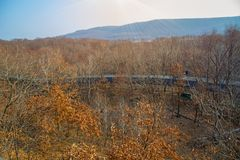 Autumn forest, Safari Park, it highest bridge to walking people. Russia. Primorskiy Kray Stock Photography