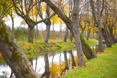 Autumn park scenery Royalty Free Stock Photos