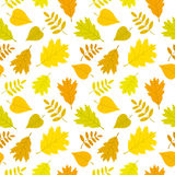 Autumn forest seamless pattern with oak, rowan, lilac leaves. Vector set. Stock Image