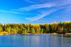 Autumn forest on shore of lake. With blue skies Royalty Free Stock Photography