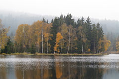 Autumn forest on the shores of lake Royalty Free Stock Photo