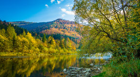 Autumn forest and sky and mountains and river. Autumn forest and blue sky and mountains and river Stock Images