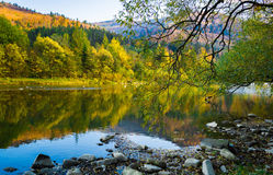 Autumn forest and sky and mountains and river. Autumn forest and blue sky and mountains and river Royalty Free Stock Photos