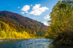 Autumn forest and sky and mountains and river. Autumn forest and blue sky and mountains and river Stock Photos