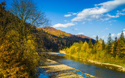 Autumn forest and sky and mountains and river. Autumn forest and blue sky and mountains and river Stock Photography