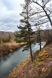 Autumn forest and the Small Kizil river in Abzakovo resort, Russia royalty free stock photography