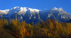 Autumn forest and snowy mountains Stock Image