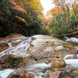 Autumn,forest and stream. Guang wu shan,sichuan,china Stock Photos
